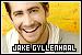 Gyllenhaal, Jake