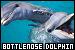 Dolphins: Bottlenose